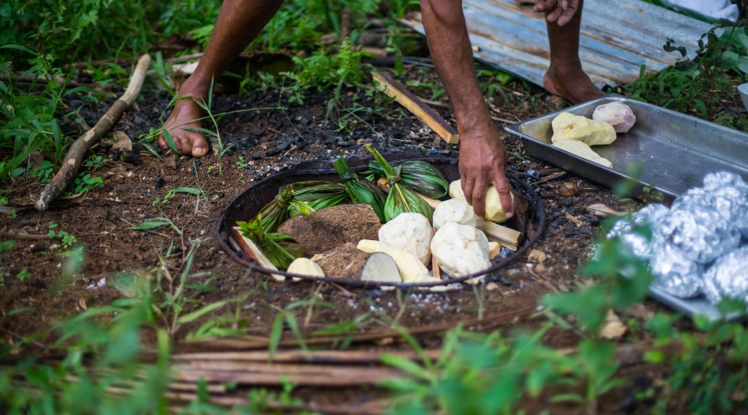 A local Samoan cooking some food in a traditional earth oven called an umu